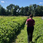 Harvesting Blue